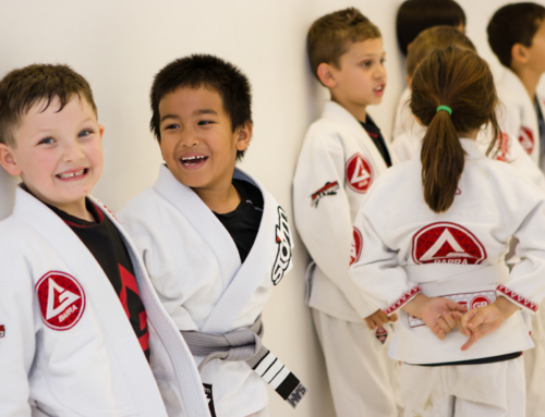 I Don't Want To Compete Or Fight; I Just Want To Learn Brazilian Jiu Jitsu Recreationally